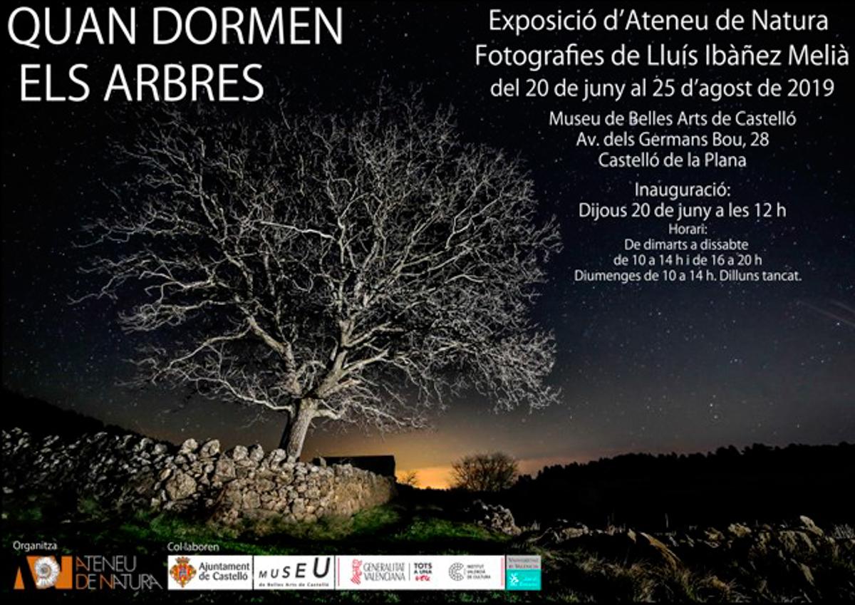 Castelló, Museu de BBAA - Quan dormen els Arbres - LLUIS IBAÑEZ MELIA, Geografies als Ports Maestrat