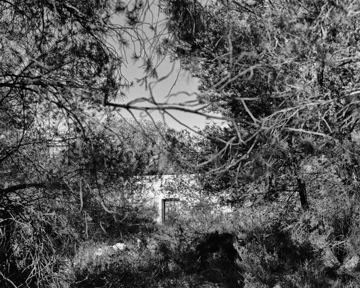 Irta. Caseta de volta vora el Barranc de la Torre Nova - Les Casetes de Volta del Baix Maestrat - LLUIS IBAÑEZ MELIA, Geografies als Ports Maestrat