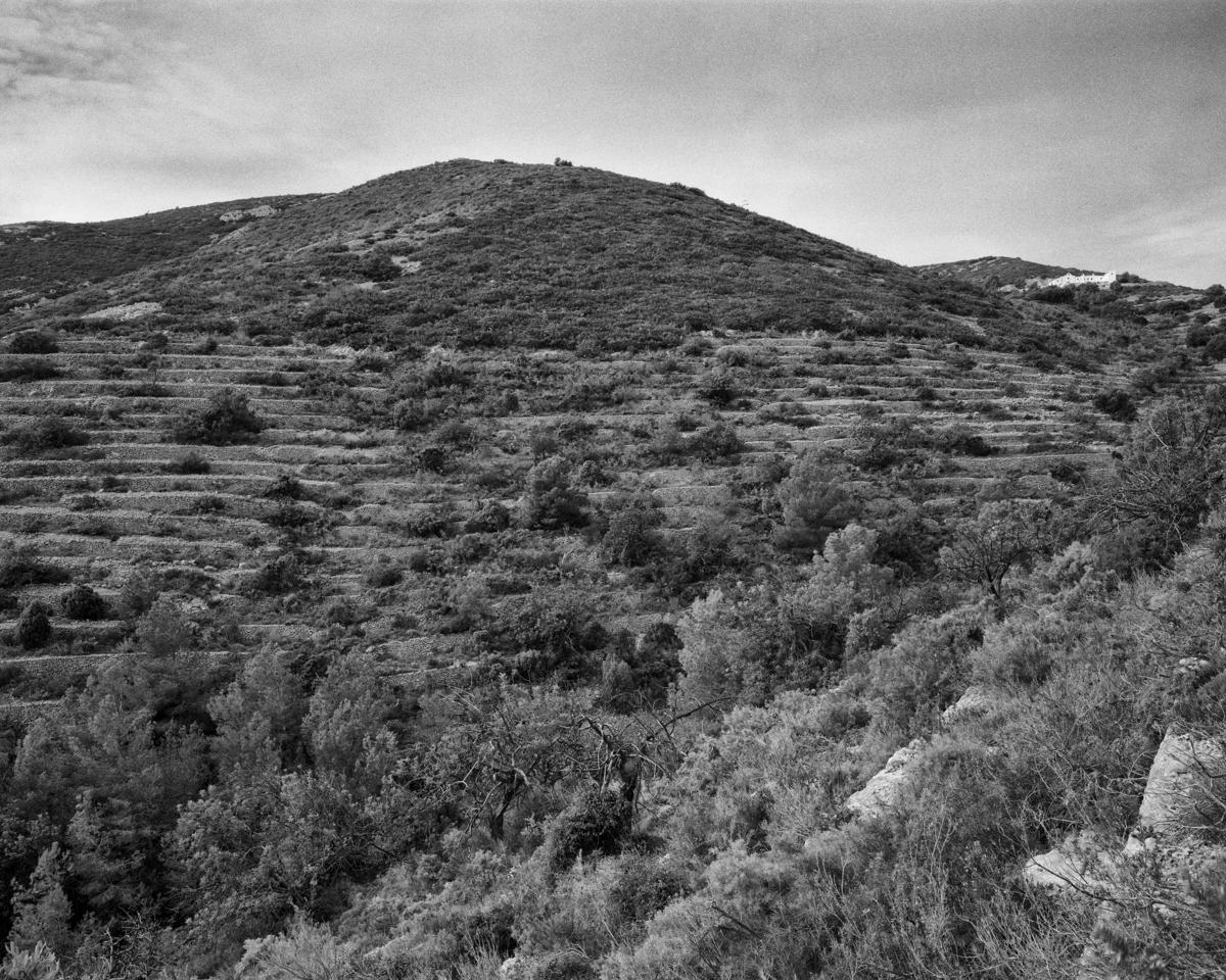 Irta. El Barranc de la Rabosera - Les Casetes de Volta del Baix Maestrat, habitatges temporers - LLUIS IBAÑEZ MELIA, Geografies als Ports Maestrat