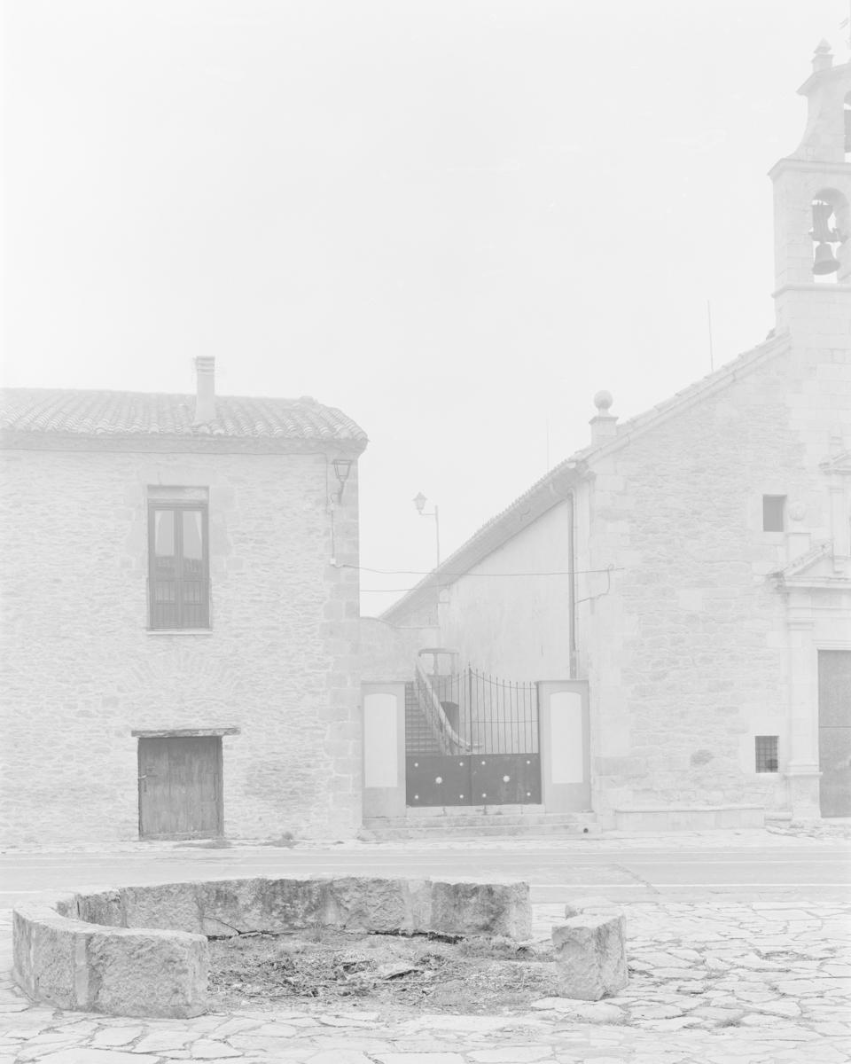 L'Om del Llosar. Vilafranca - Arbres