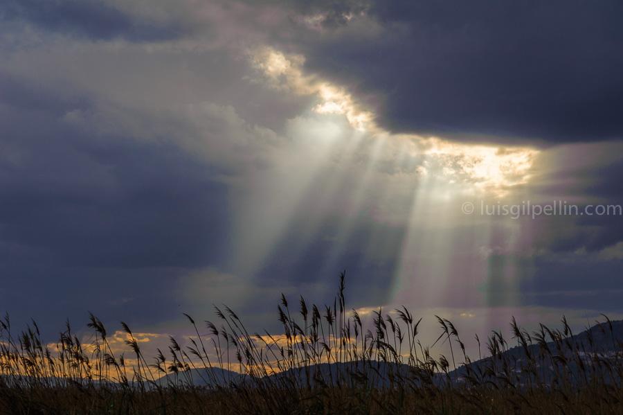 La luz - Buscando la luz - Luis Antonio Gil  Pellín , Fotografia de naturaleza