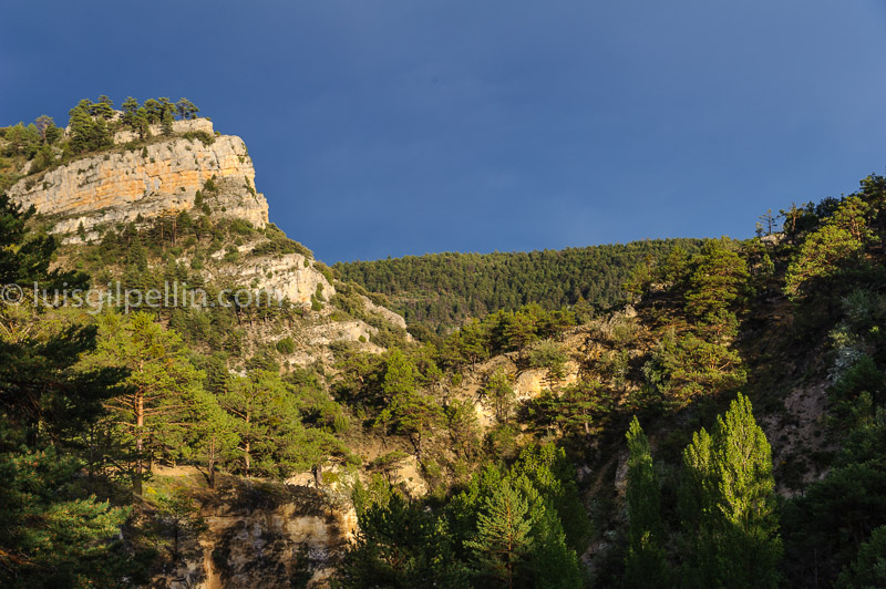 Calomarde - Sierra de Albarracín - Luis Antonio Gil  Pellín , Fotografia de naturaleza