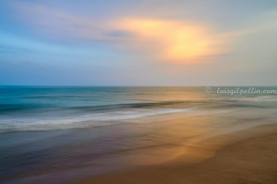 Sedas - Buscando la luz - Luis Antonio Gil  Pellín , Fotografia de naturaleza