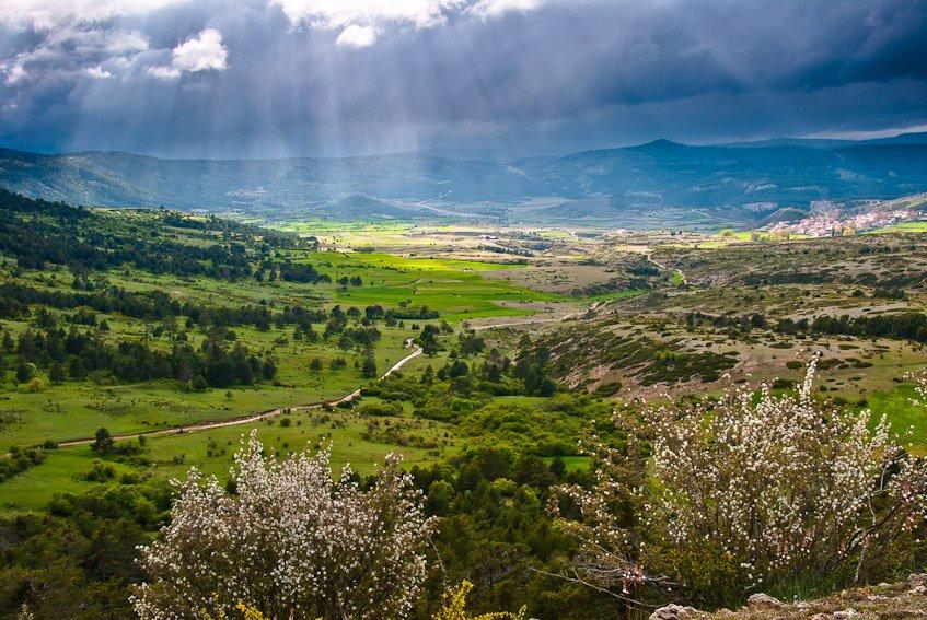 Primavera en Frias - Sierra de Albarracín - Luis Antonio Gil  Pellín , Fotografia de naturaleza
