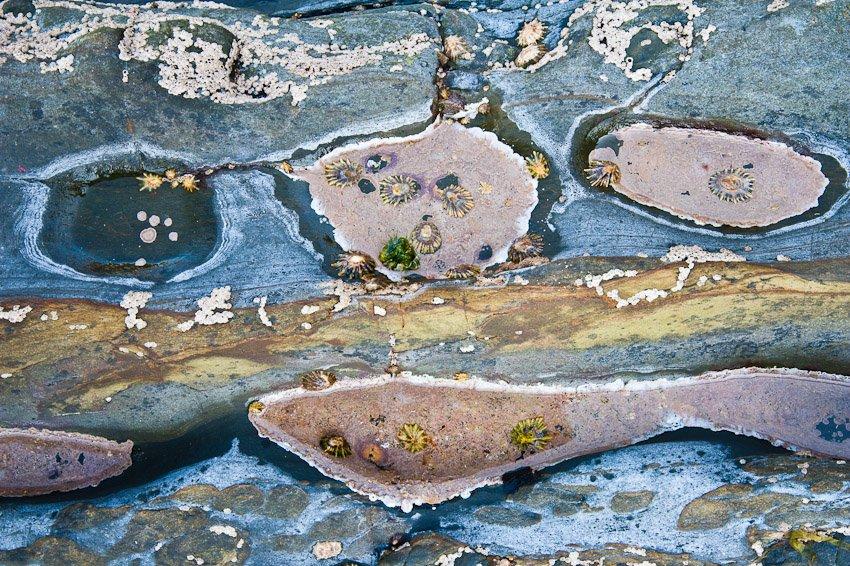 Costa abstracta - Naturaleza intima - Luis Antonio Gil  Pellín , Fotografia de naturaleza