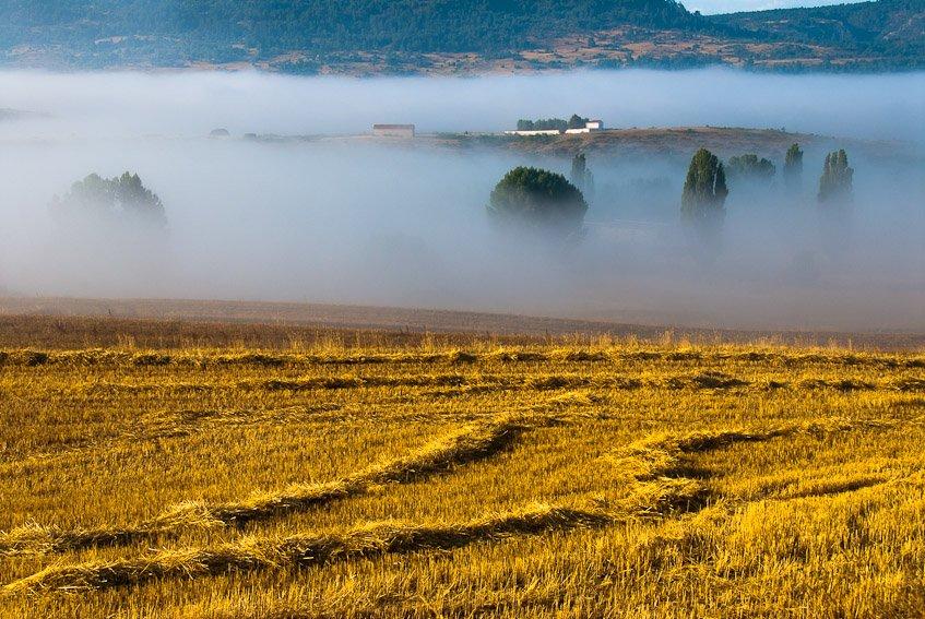 Campos de Frias - Sierra de Albarracín - Luis Antonio Gil  Pellín , Fotografia de naturaleza
