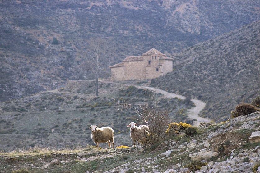 Camino a la ermita - Sierra de Albarracín - Luis Antonio Gil  Pellín , Fotografia de naturaleza