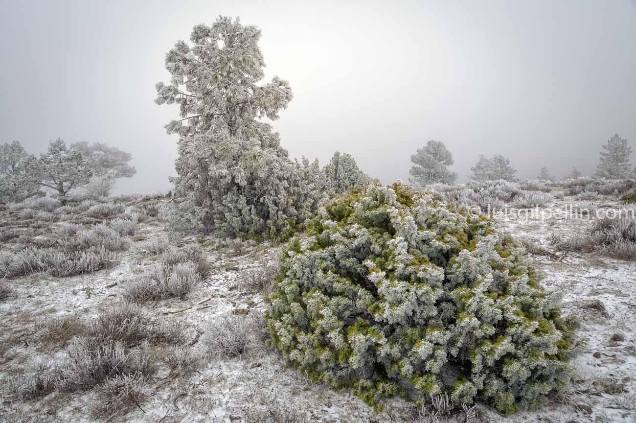 Javalambre - Buscando la luz - Luis Antonio Gil  Pellín , Fotografia de naturaleza