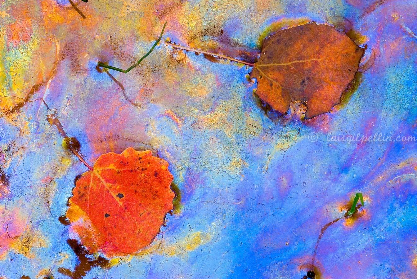Aguas de otoño - Ultimas imagenes - Luis Antonio Gil  Pellín , Fotografia de naturaleza