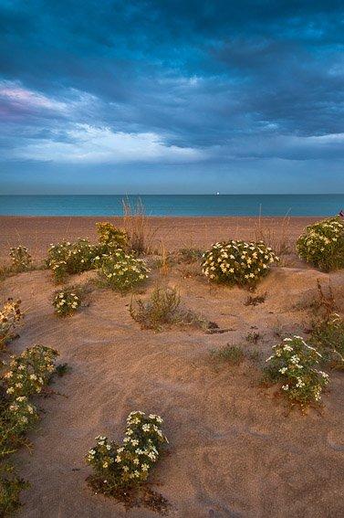 Almardá - Buscando la luz - Luis Antonio Gil  Pellín , Fotografia de naturaleza