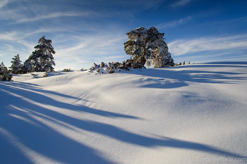 Sombras en la nieve  - Buscando la luz - Luis Antonio Gil  Pellín , Fotografia de naturaleza
