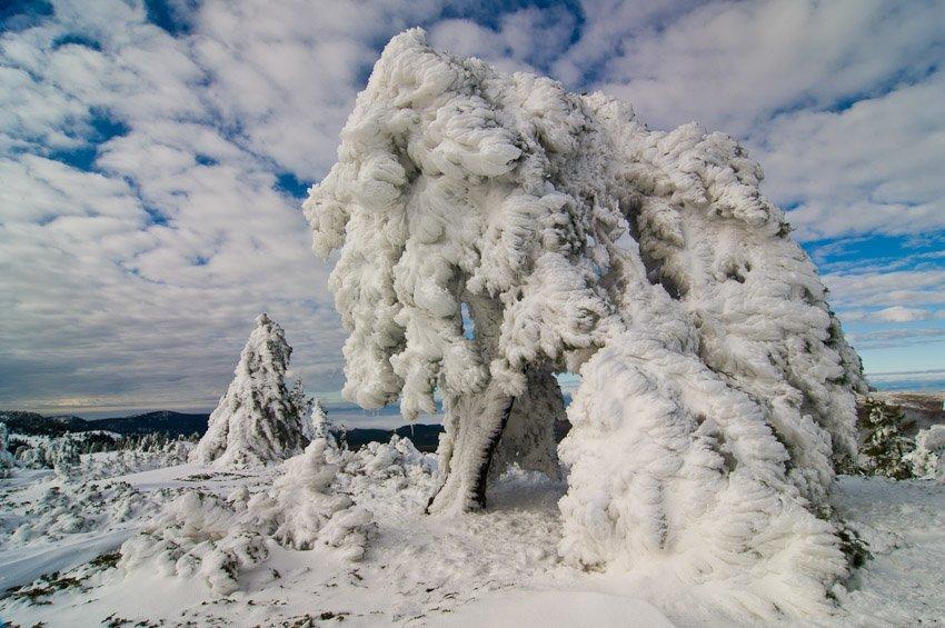 En el reino del hielo - Buscando la luz - Luis Antonio Gil  Pellín , Fotografia de naturaleza