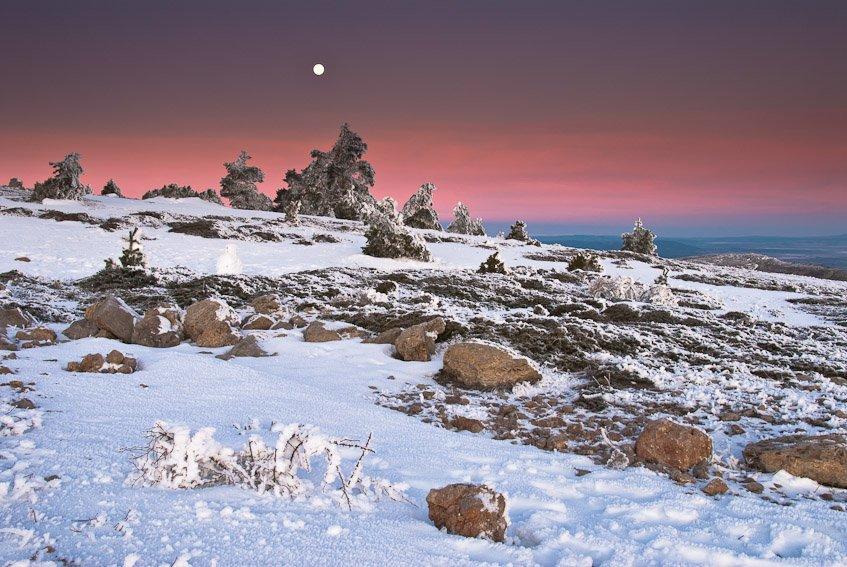 Luna llena - Buscando la luz - Luis Antonio Gil  Pellín , Fotografia de naturaleza