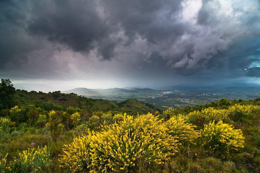 Calderona - Buscando la luz - Luis Antonio Gil  Pellín , Fotografia de naturaleza