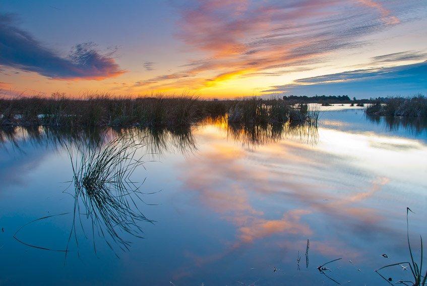 Buscando la luz - Luis Antonio Gil  Pellín , Fotografia de naturaleza