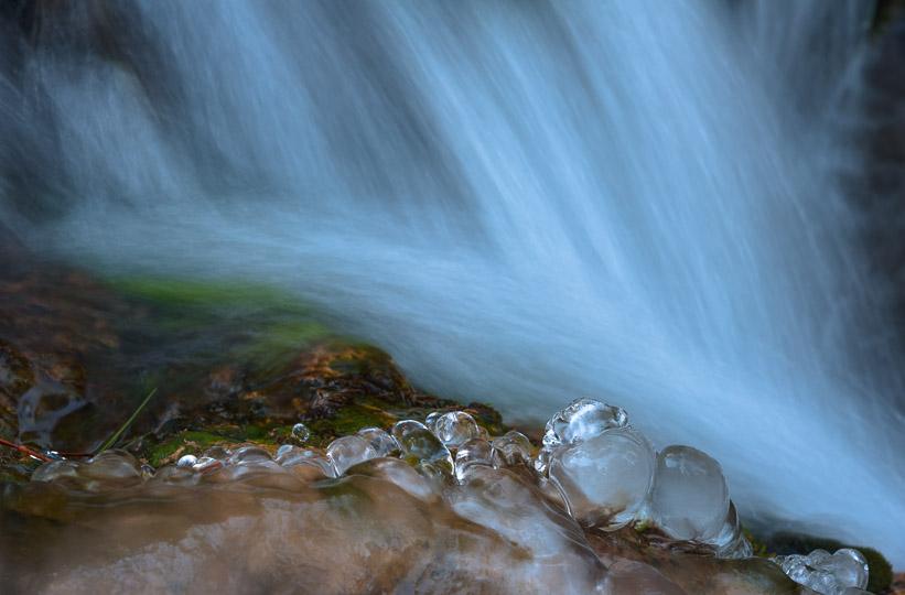 Caprichos de hielo - Naturaleza intima - Luis Antonio Gil  Pellín , Fotografia de naturaleza