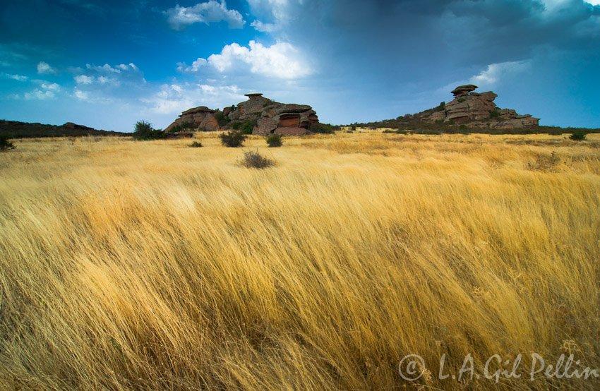 Campos de Ródenas - Sierra de Albarracín - Luis Antonio Gil  Pellín , Fotografia de naturaleza