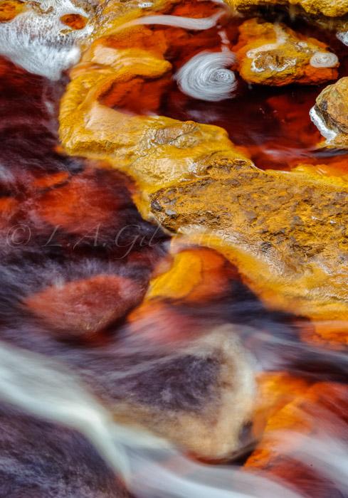 Tinto - Ultimas imagenes - Luis Antonio Gil  Pellín , Photographs of nature