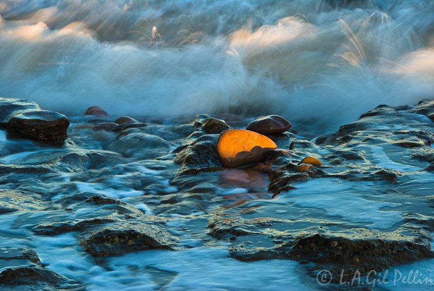 Útima luz - Naturaleza intima - Luis Antonio Gil  Pellín , Fotografia de naturaleza