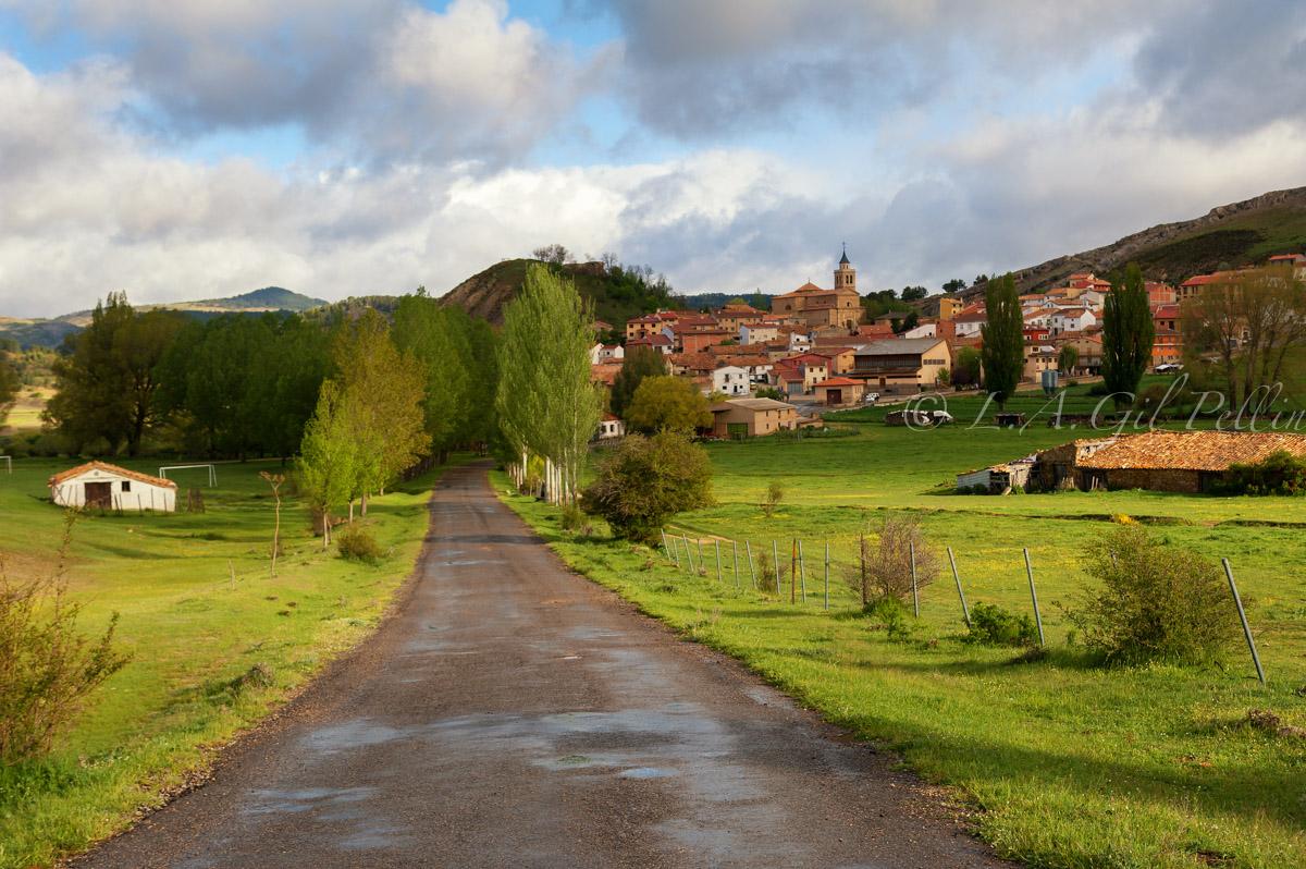 Carretera a Frias de Albarracín - Sierra de Albarracín - Luis Antonio Gil  Pellín , Fotografia de naturaleza