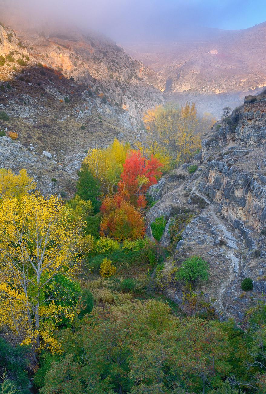 Riberas del Guadalaviar - Sierra de Albarracín - Luis Antonio Gil  Pellín , Fotografia de naturaleza