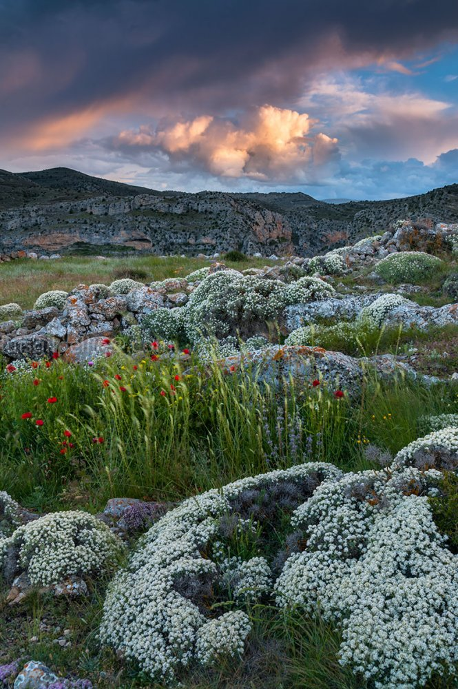 Por los altos cerros - Sierra de Albarracín - Luis Antonio Gil  Pellín , Fotografia de naturaleza