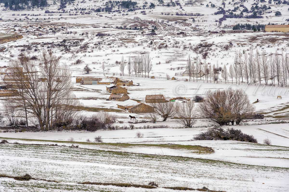 Frias de Albarracín - Sierra de Albarracín - Luis Antonio Gil  Pellín , Fotografia de naturaleza