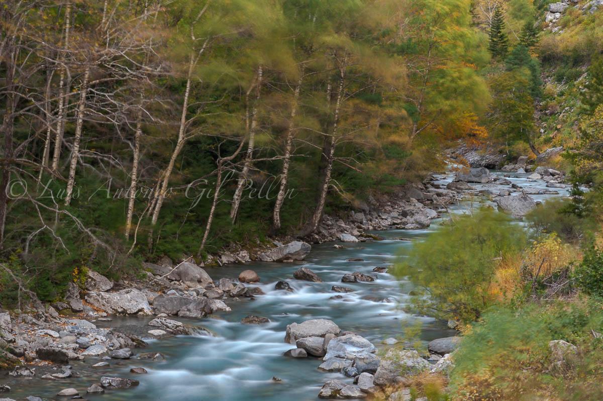 Viento de otoño, Rio Ara - Ultimas imagenes - Luis Antonio Gil  Pellín , Fotografie della natura
