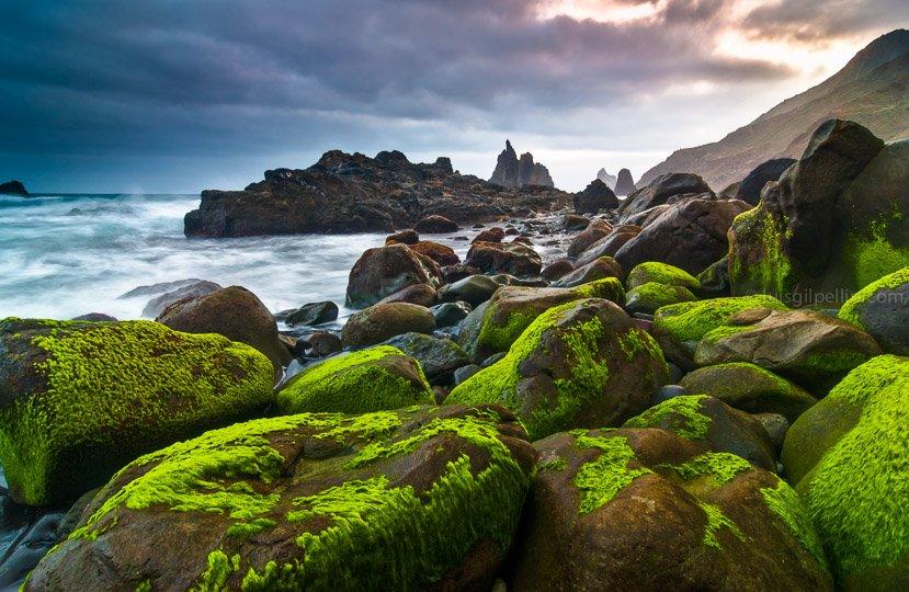 Costa salvaje - Buscando la luz - Luis Antonio Gil  Pellín , Fotografia de naturaleza
