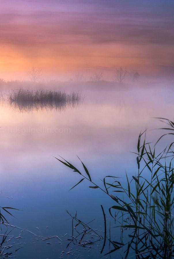 Al alba - Buscando la luz - Luis Antonio Gil  Pellín , Fotografia de naturaleza