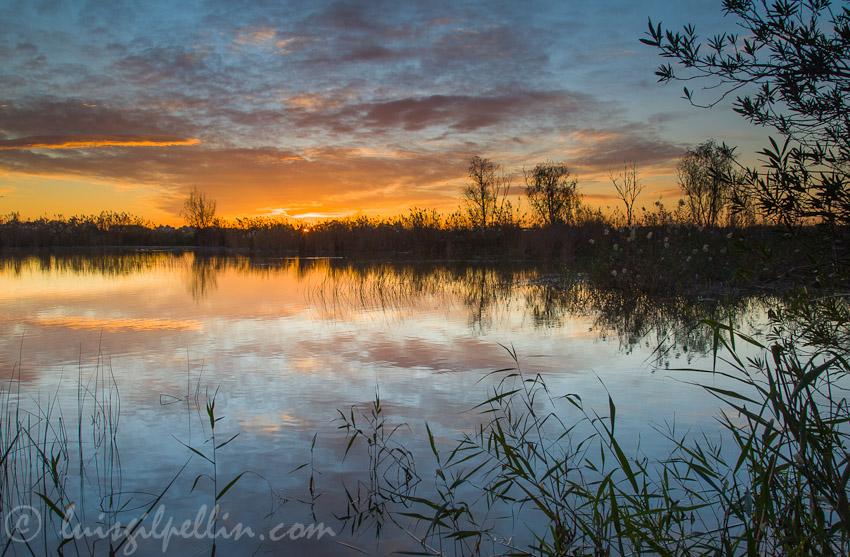 El estanque - Buscando la luz - Luis Antonio Gil  Pellín , Fotografia de naturaleza