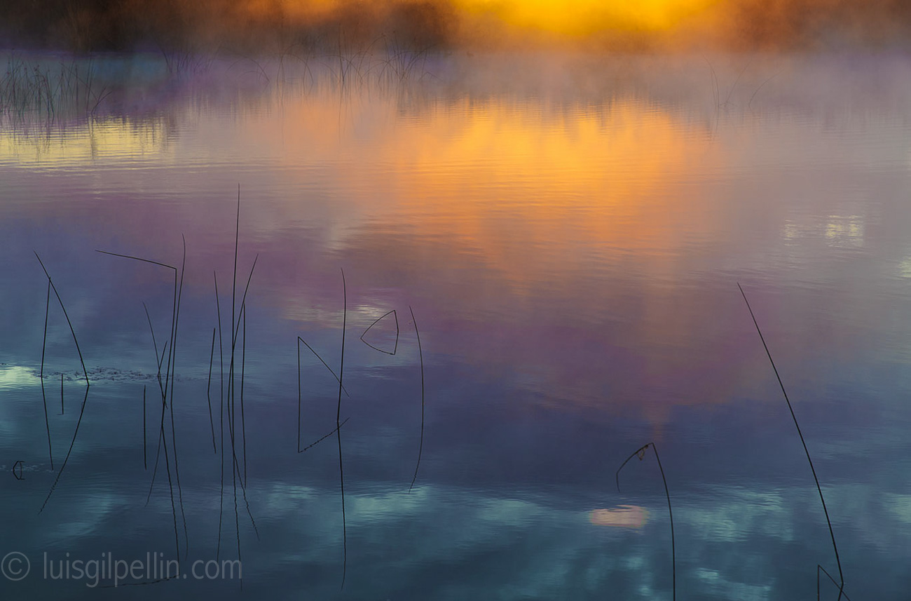 Estany - Buscando la luz - Luis Antonio Gil  Pellín , Fotografia de naturaleza