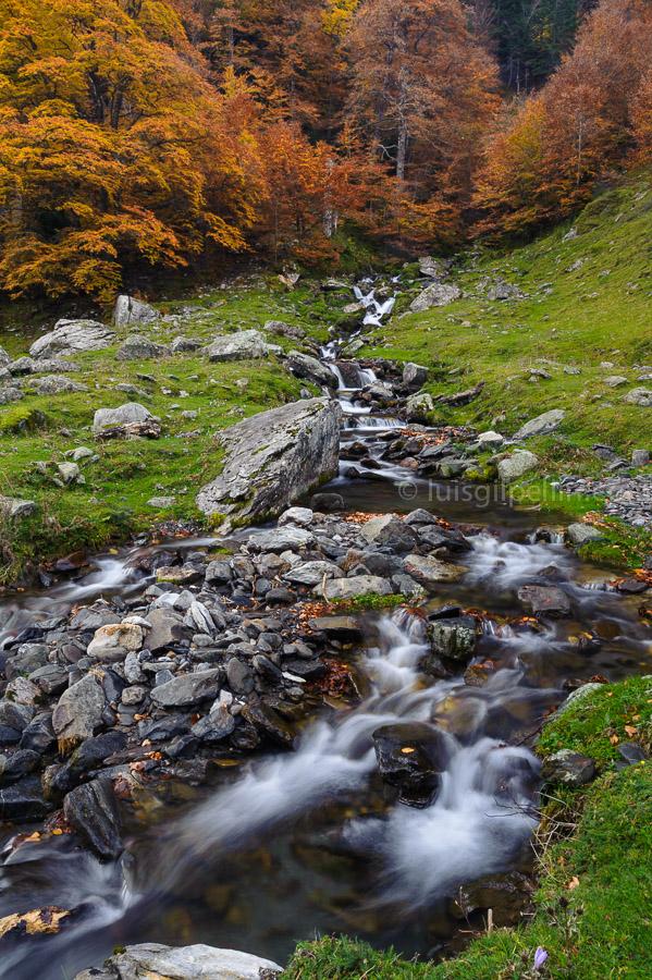 Arroyo de montaña - Buscando la luz - Luis Antonio Gil  Pellín , Fotografia de naturaleza