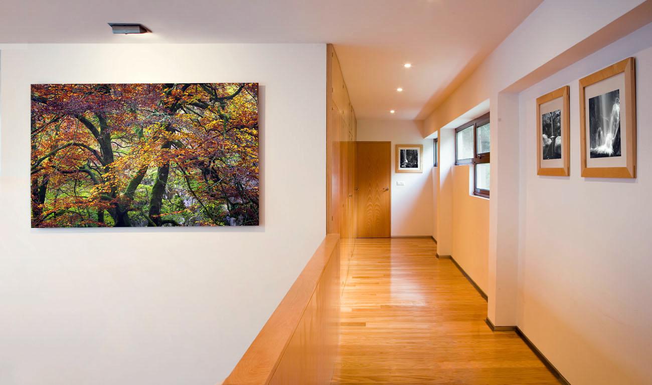Foto Arte - MANUEL LEMOS. Fotografía. Diseño. Audiovisual.