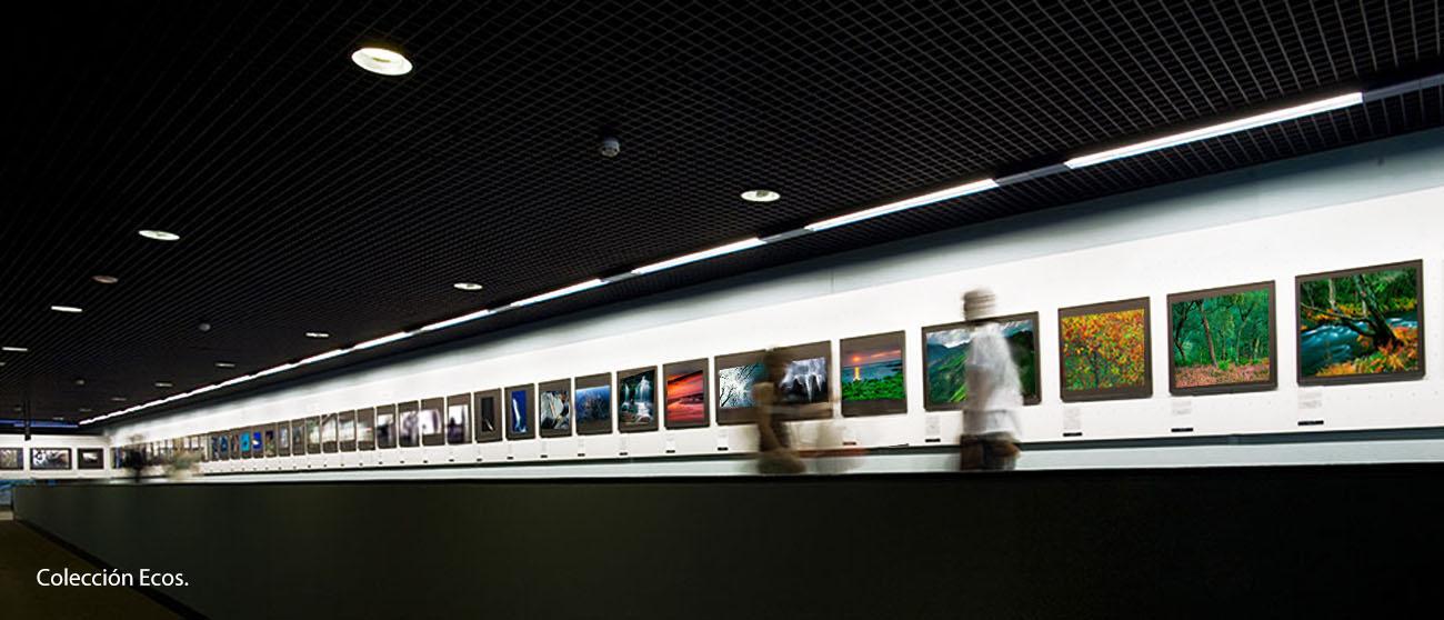 Foto Arte - MANUEL LEMOS. Photography. Design. Audiovisual.