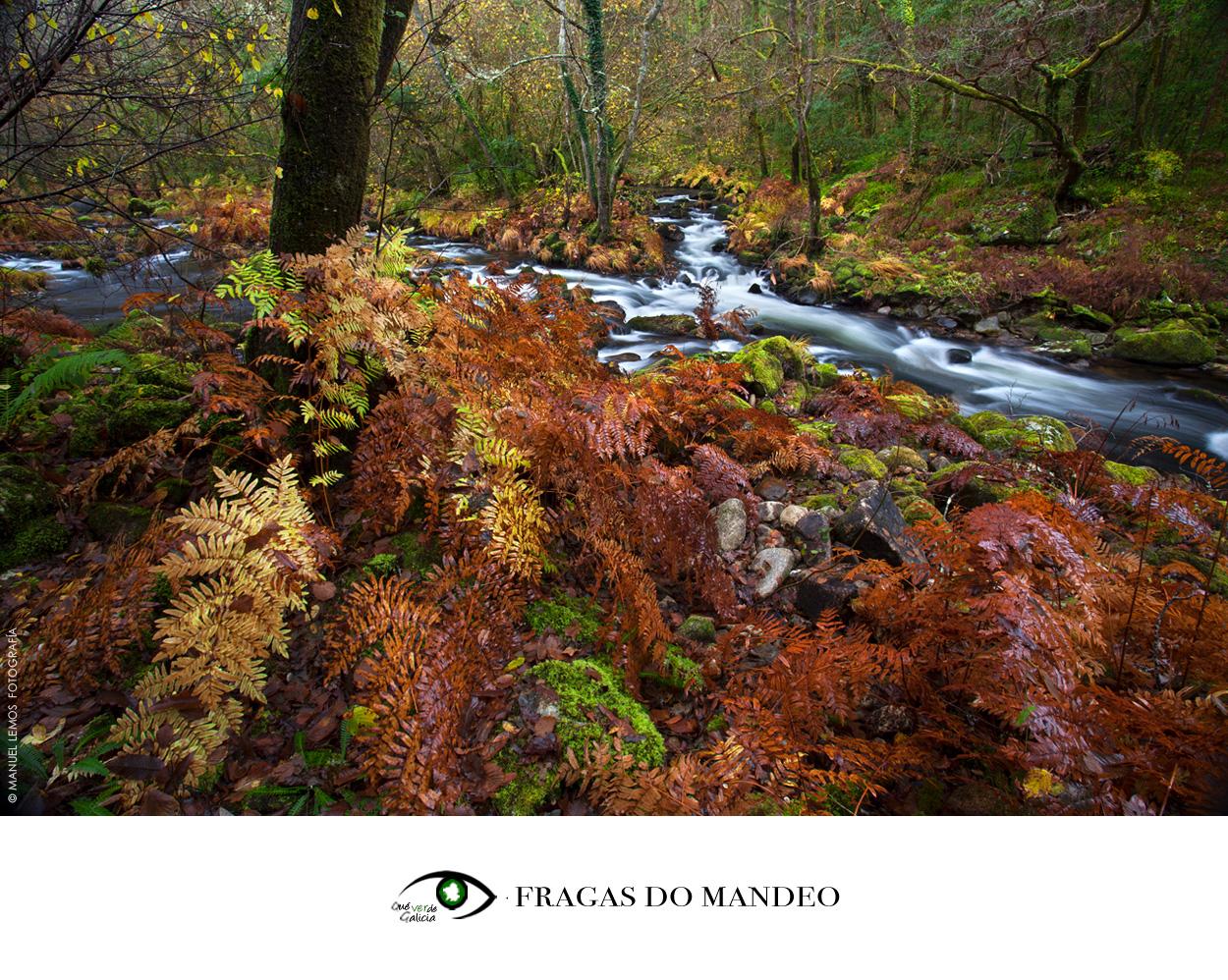 Qué VERde! Galicia - MANUEL LEMOS, Fotografía. Diseño. Audiovisual.