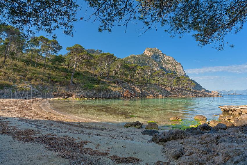 Ses Caletes des Cap Pinar, Alcúdia, Mallorca - Mallorca Genuina - Mallorca Genuina
