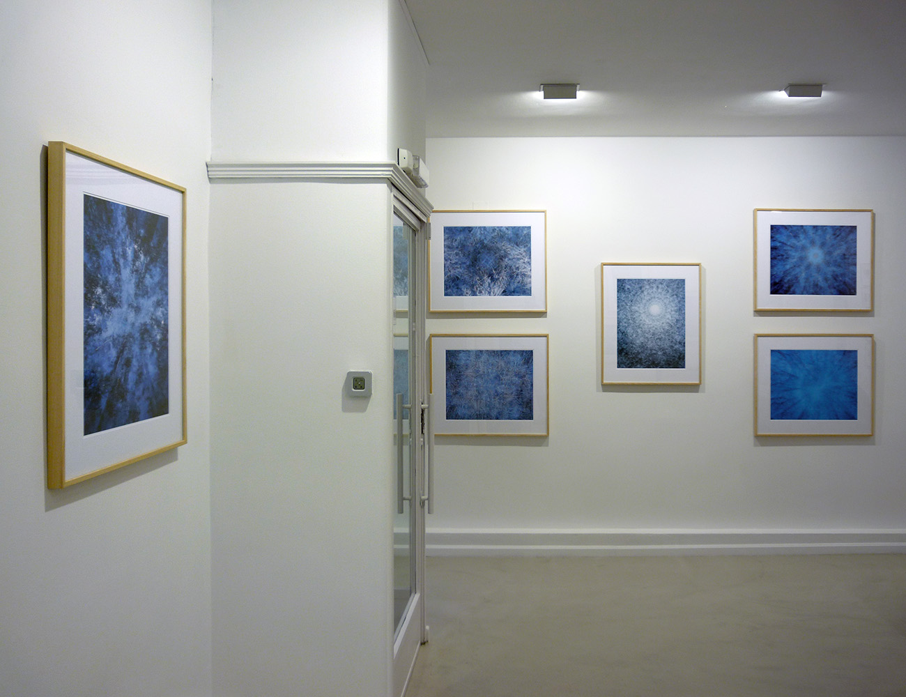 EXPOSICIONES - FERNANDO PUCHE,  NATURE  PHOTOGRAPHY  BEYOND  OBVIOUS