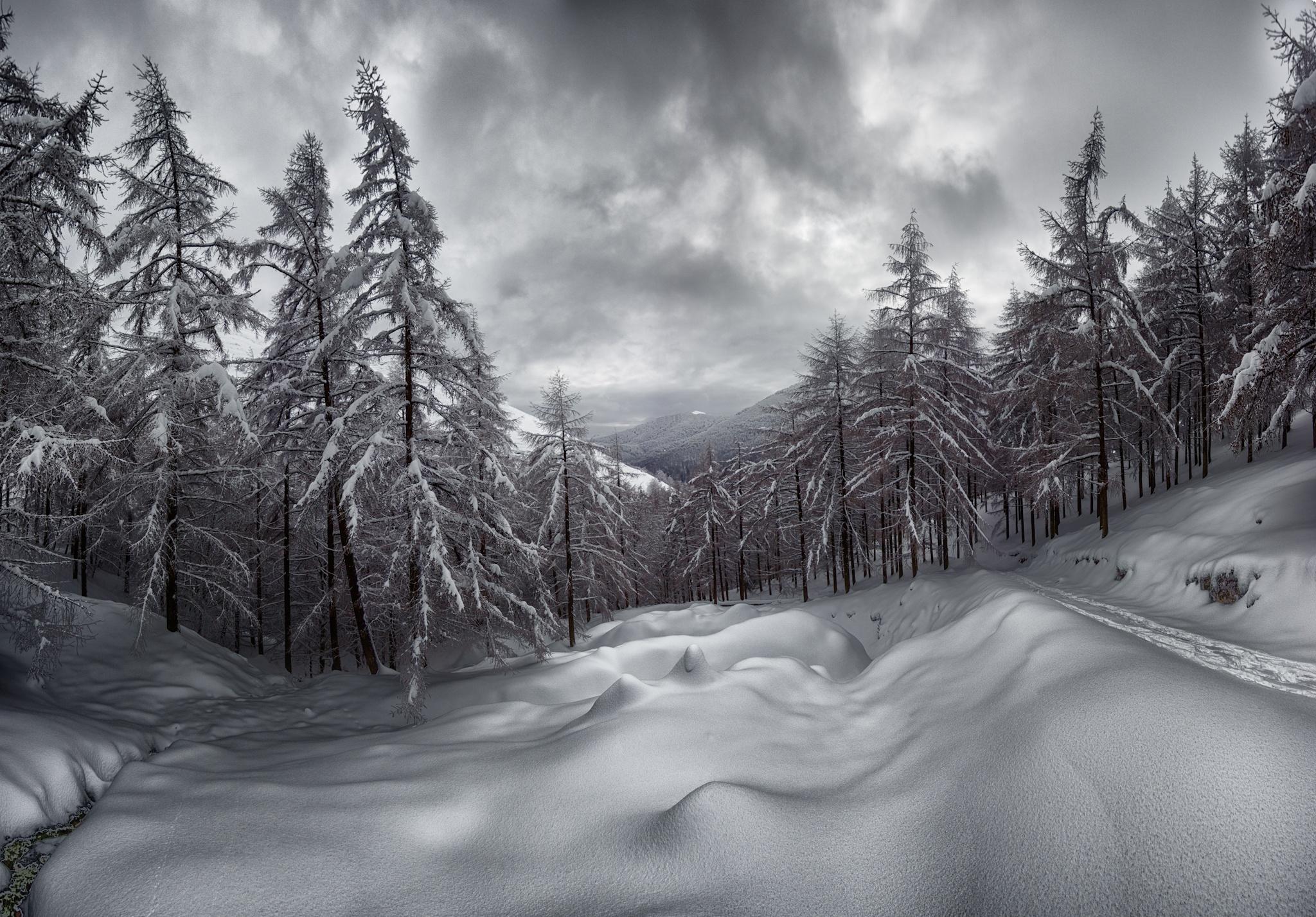 Saioa, Pirineo Navarro - Otras montañas - Fotos del Valle del Aragón, Mikel Besga