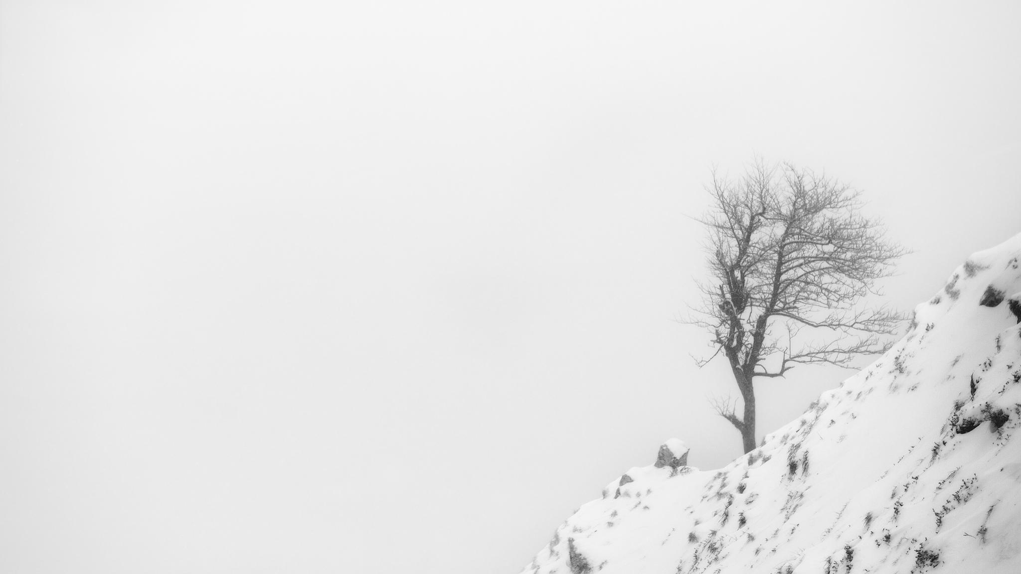 Aitzgorri - Otras montañas - Fotos del Valle del Aragón, Mikel Besga