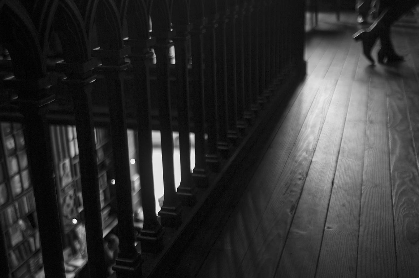 Sombras en calma | 2015 | Livraria Lello e Irmão - Oporto, Portugal - Quiet shadows | 2015 | Livraria Lello e Irmão - Porto, Portugal - Miguel Naya | Photography