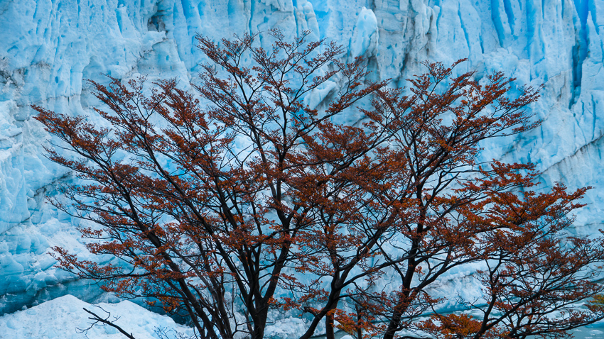 Patagonia - Yolanda Moreno & Juan Abal , Fotografía de naturaleza y de viajes