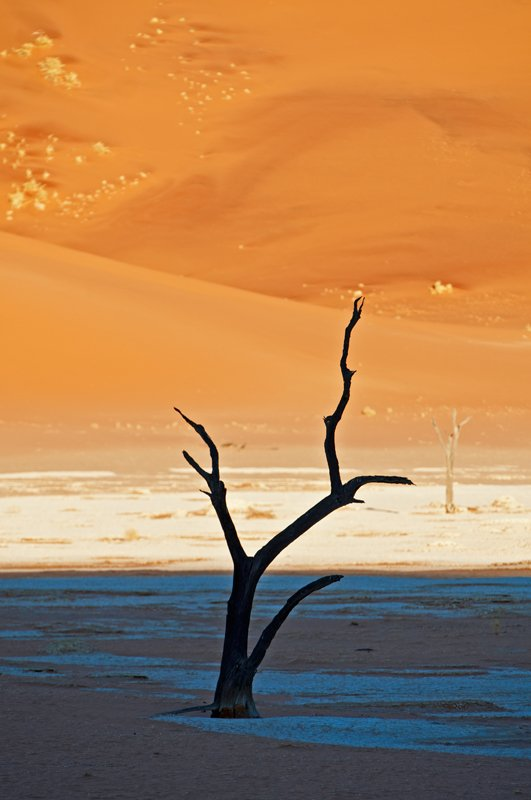 RIP - golddust - Gold dust. Namibia´s Namib desert photography by Nuria B. Arenas
