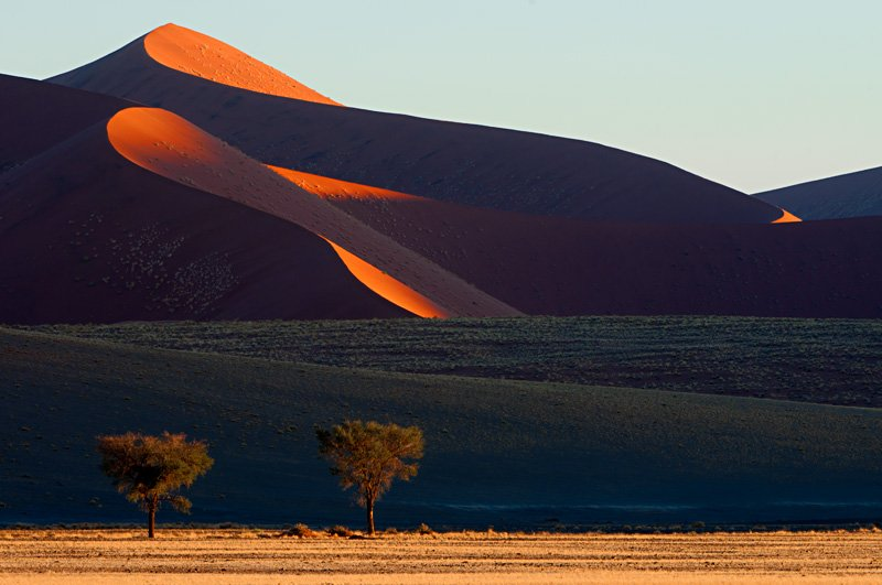 colors of the Namib - golddust - Gold dust. Namibia´s Namib desert photography by Nuria B. Arenas