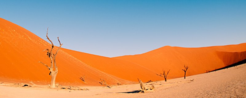 dreaming... - golddust - Gold dust. Namibia´s Namib desert photography by Nuria B. Arenas