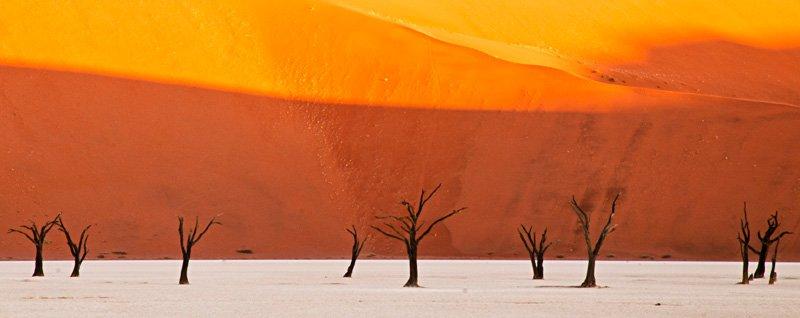 orange world - golddust - Gold dust. Namibia´s Namib desert photography by Nuria B. Arenas