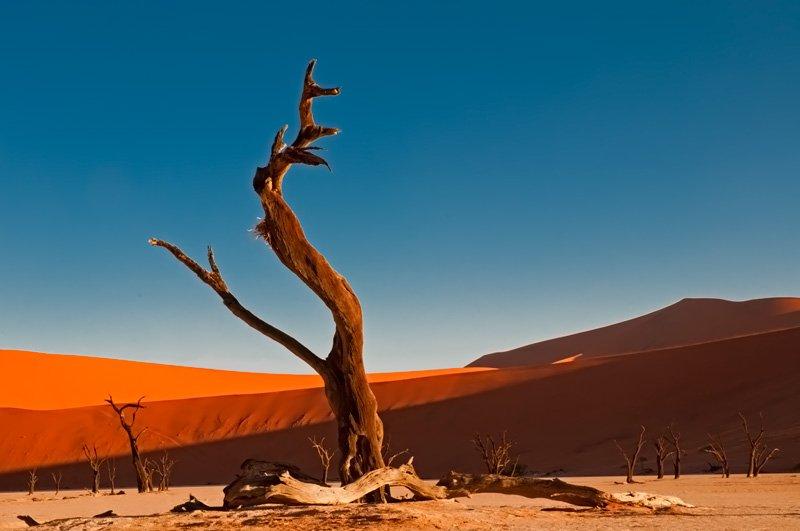 natural obelisk - golddust - Gold dust. Namibia´s Namib desert photography by Nuria B. Arenas