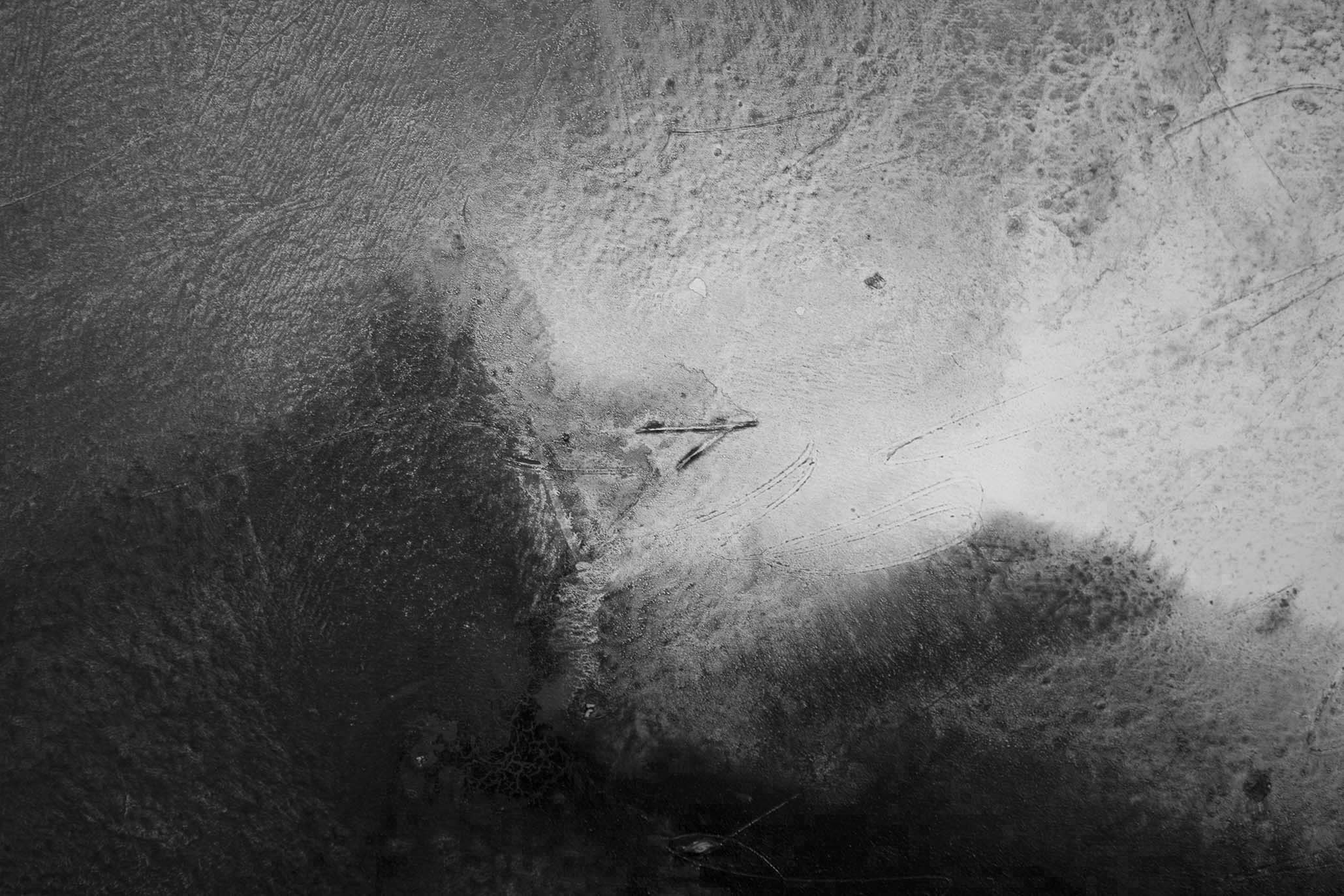 Francis of Assisi transfigured and sparrow / detail - APPARITIONS b/w - Pere Galera
