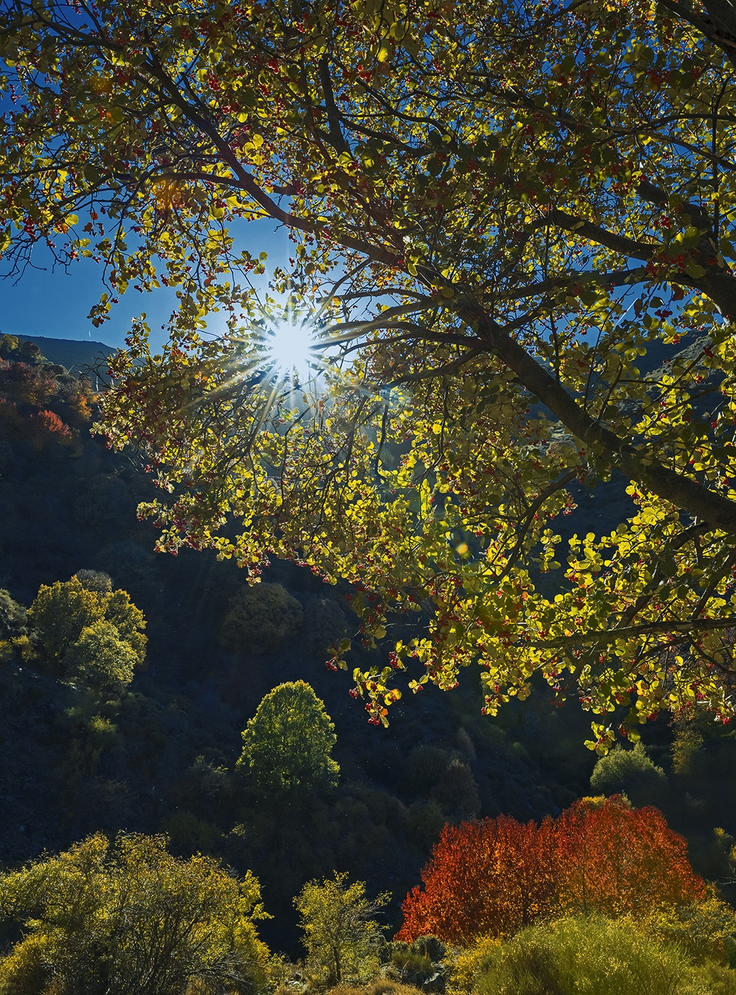 Sierra Nevada - Mediterranean light - Peter Manschot Al Andalus Photo Tour, Landscape photography photos prints workshops Andalusia Spain