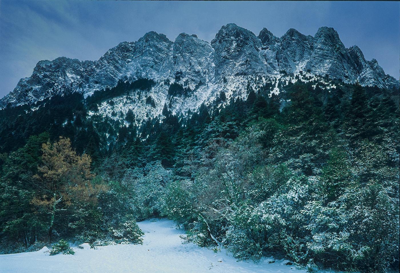 Sierra de Grazalema - Waldeinsamkeit - Peter Manschot Al Andalus Photo Tour, Landscape photography photos prints workshops Andalusia Spain